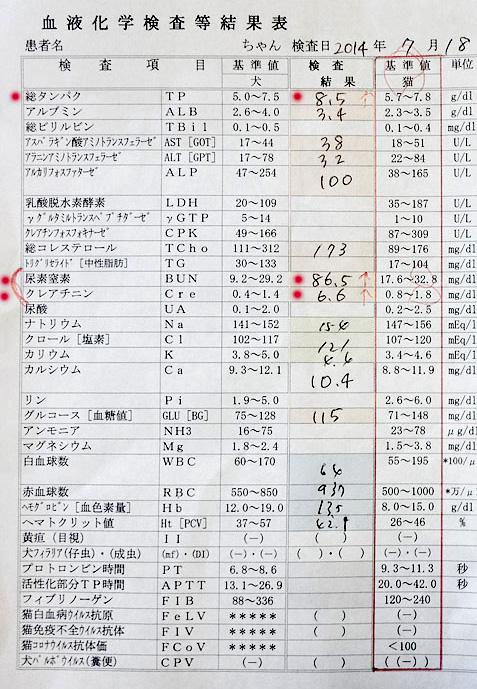 クロ血液検査結果 2014/7/18