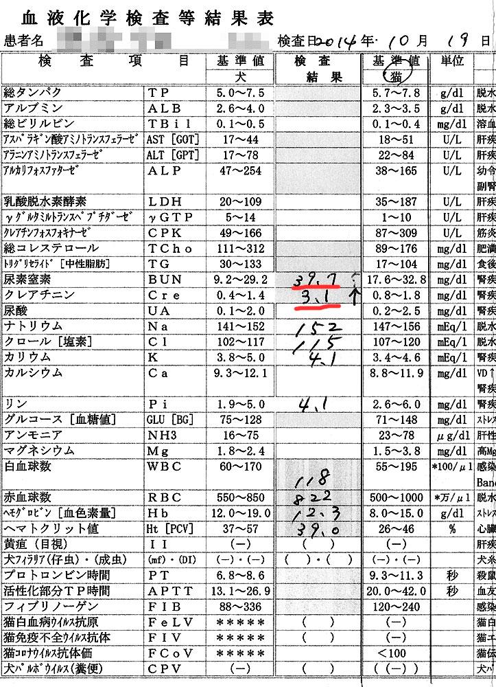 2014/10/19のクロ血液検査結果