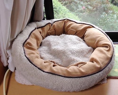 シロの猫ベッド