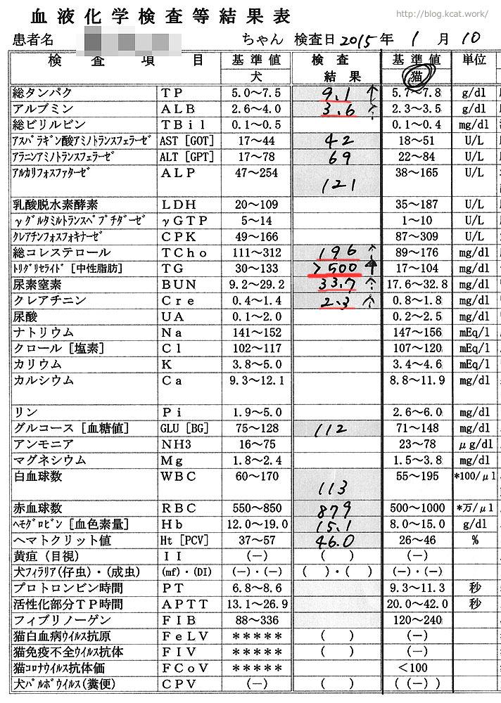 シロの血液検査結果2015/1/11