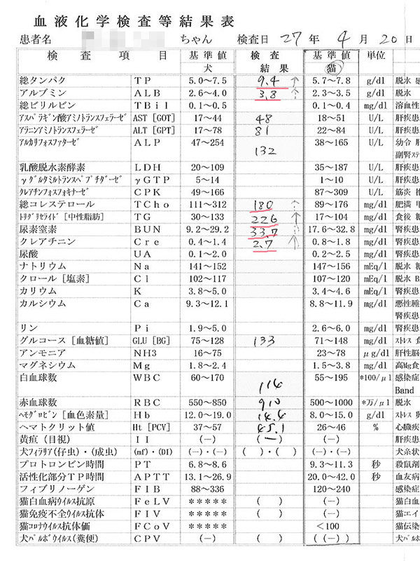 シロの検査結果2015/4/20