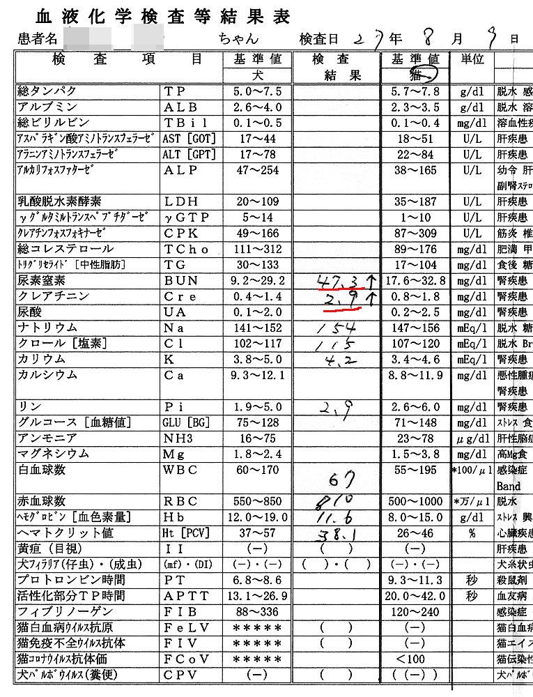 2015/8/9のクロ血液検査結果
