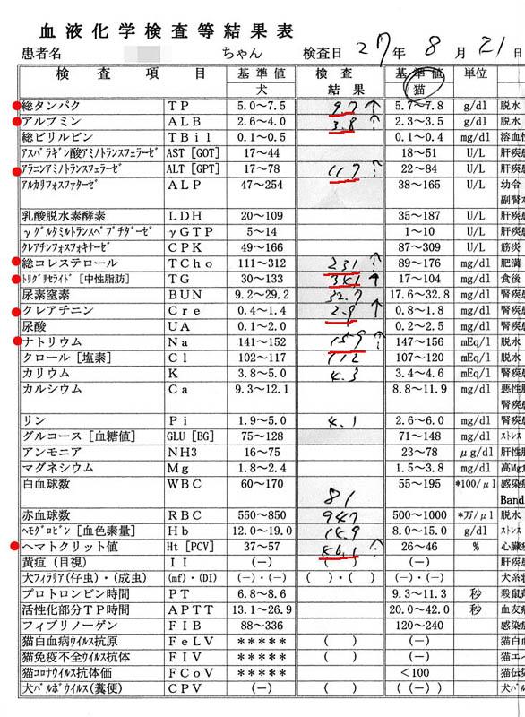 シロの血液検査結2015/8/21