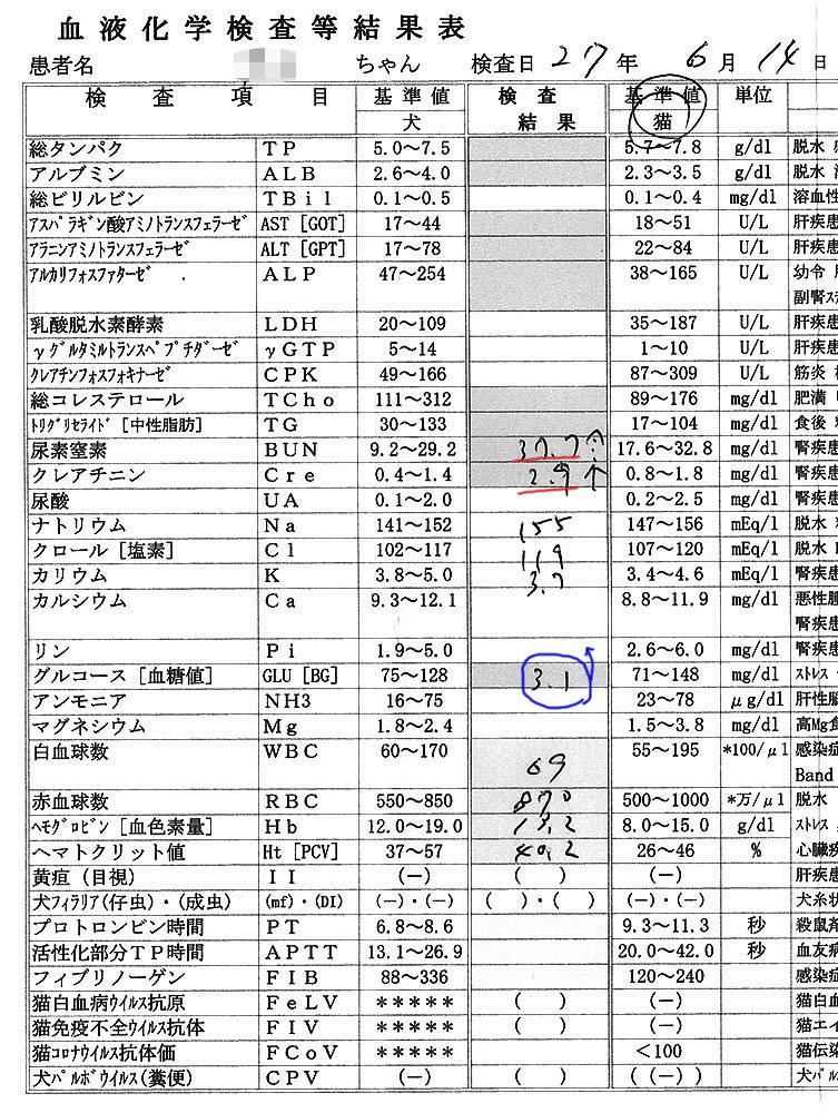 2015/6/17クロ血液検査結果