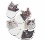 【番外・かわいい猫ふせんで犬猫支援~フェリシモ初購入レポ】