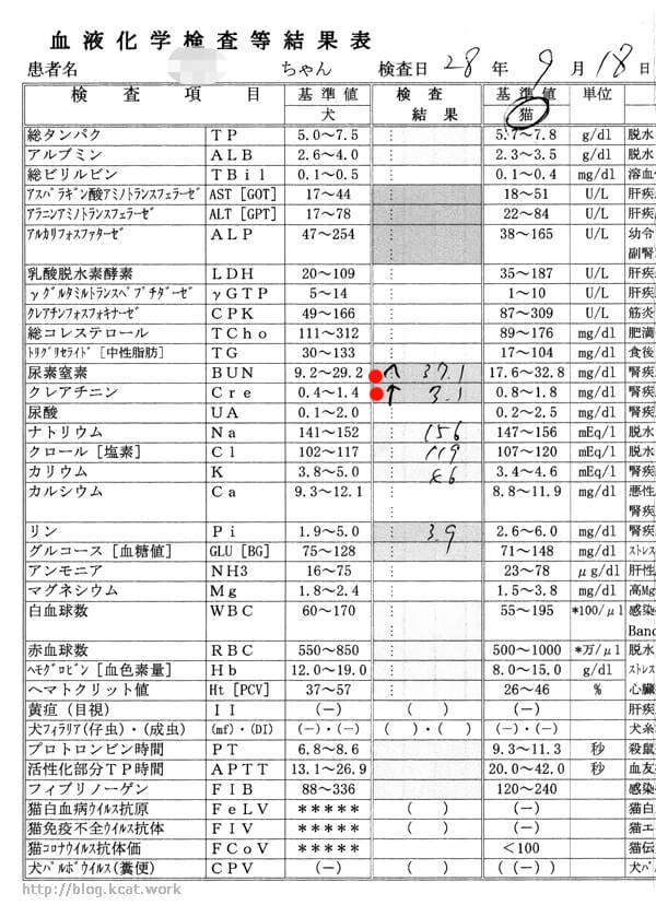 クロの血液検査結果 2016/9/18 サムネイル