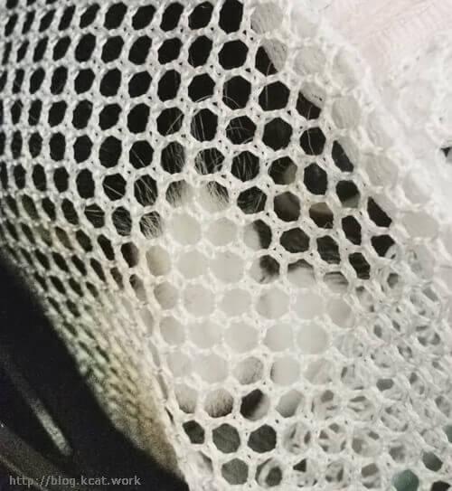 洗濯ネットの中のクロ