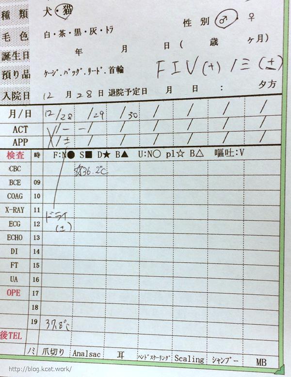 シマの入院記録