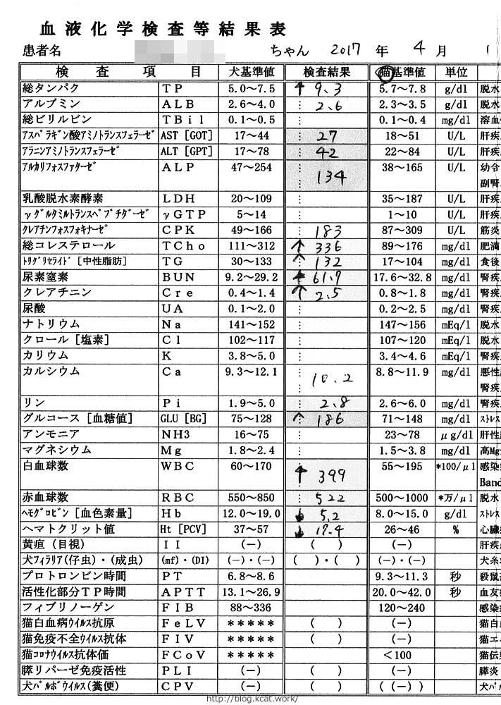 フク血液検査結果2017/4/1