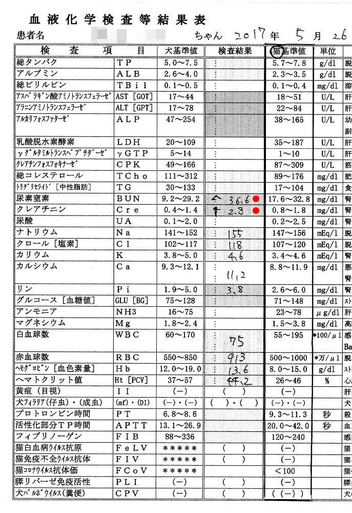 クロ血液検査結果2017/5/26