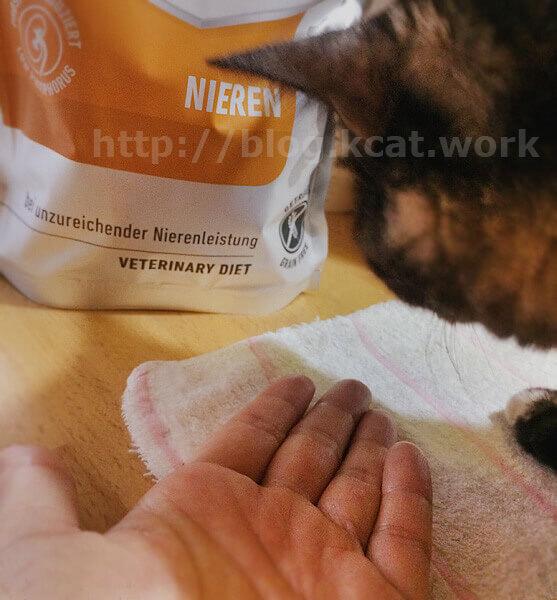 アニモンダ 猫用 腎臓ケア ドライ とチョビ