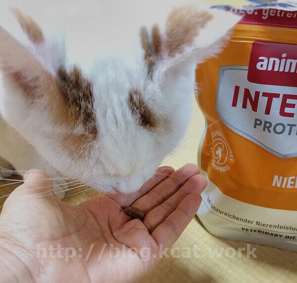 アニモンダ 猫用 腎臓ケア ドライ とシロ