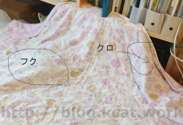 クロとフク 2017/9/16