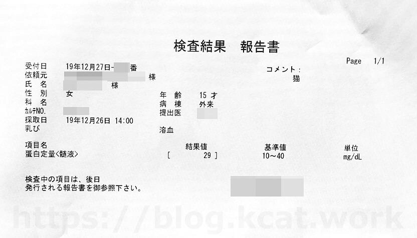 チョビの検査結果 2020/1/9