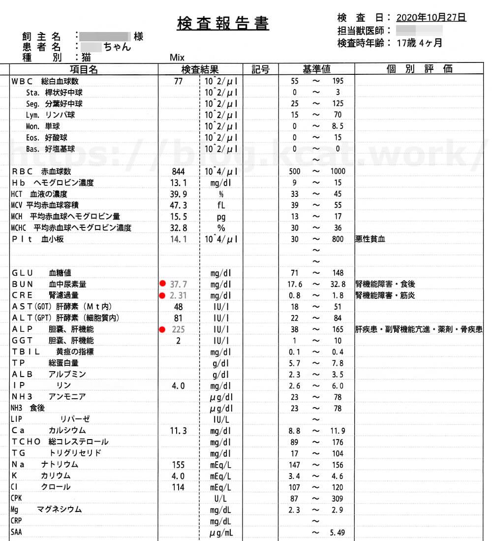クロの血液検査結果 2020/10/27