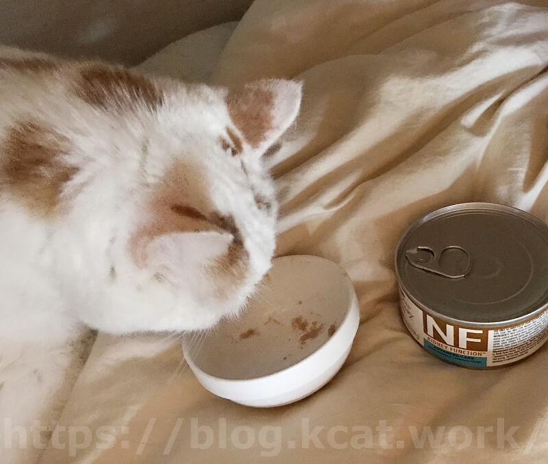 ピュリナ ベテリナリーダイエット(NF腎臓ケア中期)ウェットをシロが試食